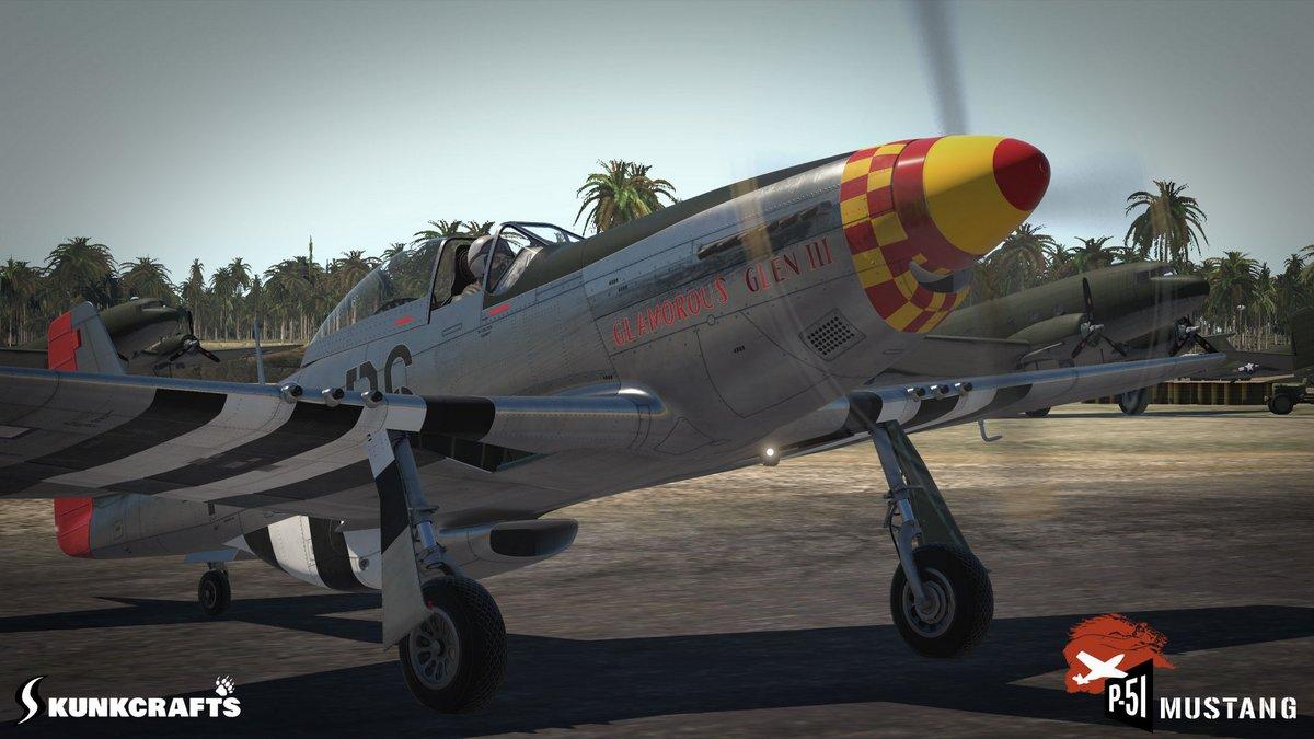 Skunkcrafts P 51d V11 26hd